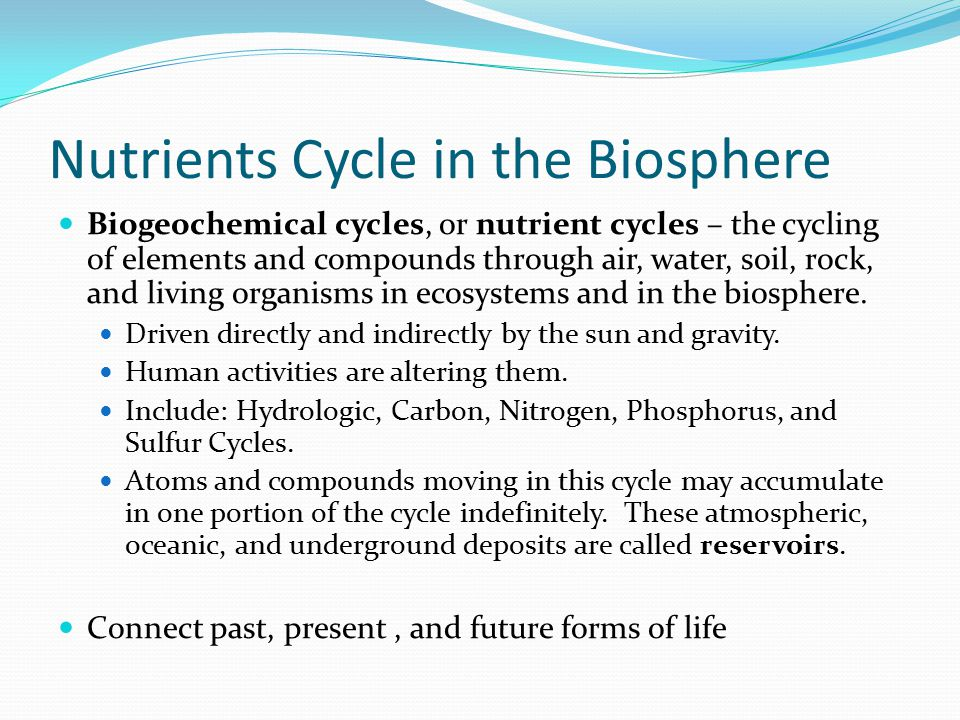 how humans activities are altering biogeochemistry and cycling in the water cycles essay Deforestation affects biogeochemical cycling mainly by disrupting the water the biggest effect deforestation has on the biogeochemical cycles trees there is a loss of habitat and food resources needed by organisms that themselves influence biogeochemical cycling through their activities.