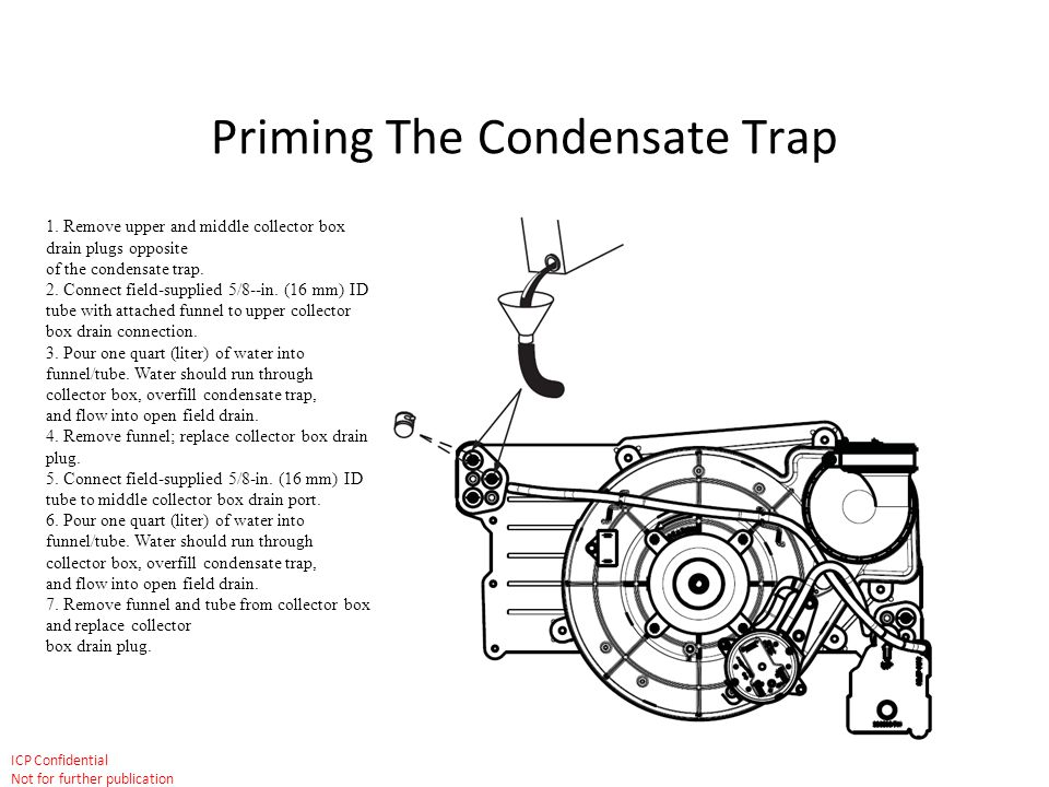 Priming The Condensate Trap