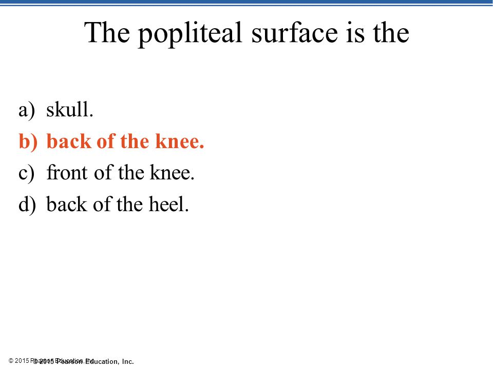 The popliteal surface is the