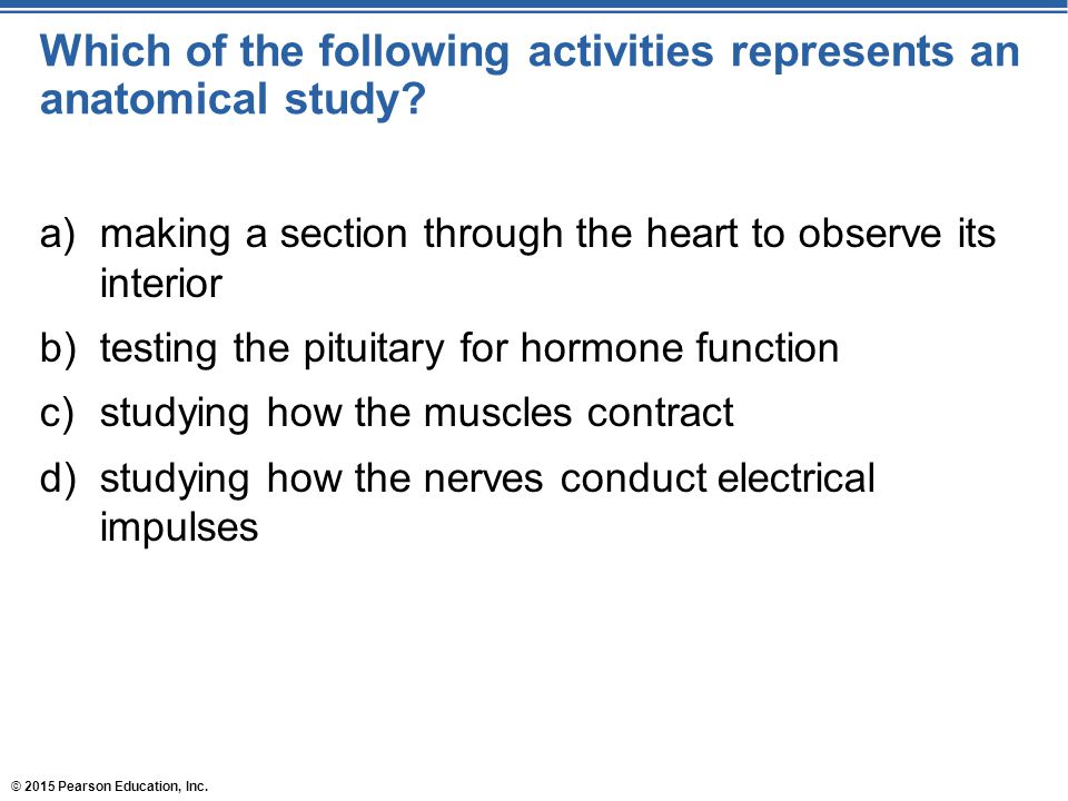 Which of the following activities represents an anatomical study