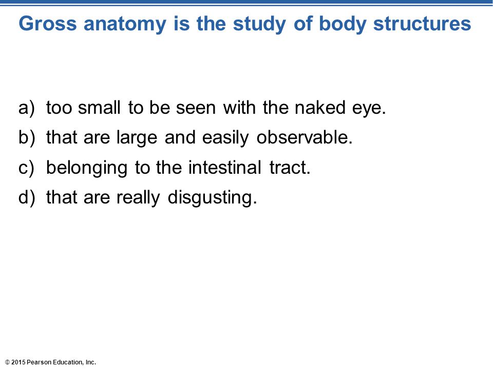Gross anatomy is the study of body structures