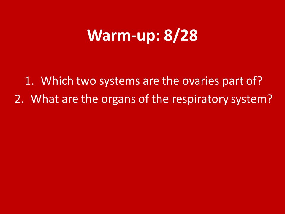 Warm-up: 8/28 Which two systems are the ovaries part of