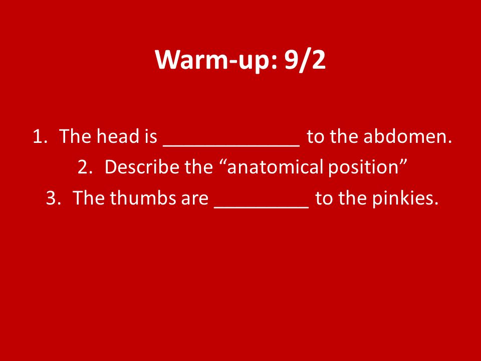Warm-up: 9/2 The head is _____________ to the abdomen.