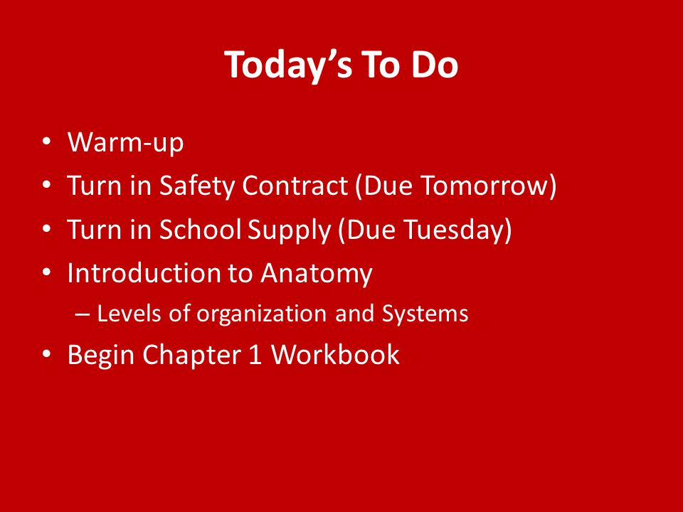 Today's To Do Warm-up Turn in Safety Contract (Due Tomorrow)