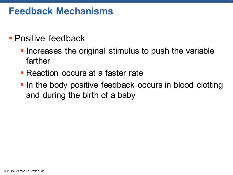 Feedback Mechanisms Positive feedback