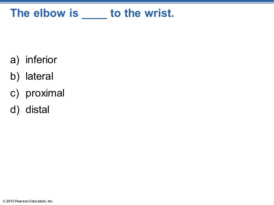 The elbow is ____ to the wrist.