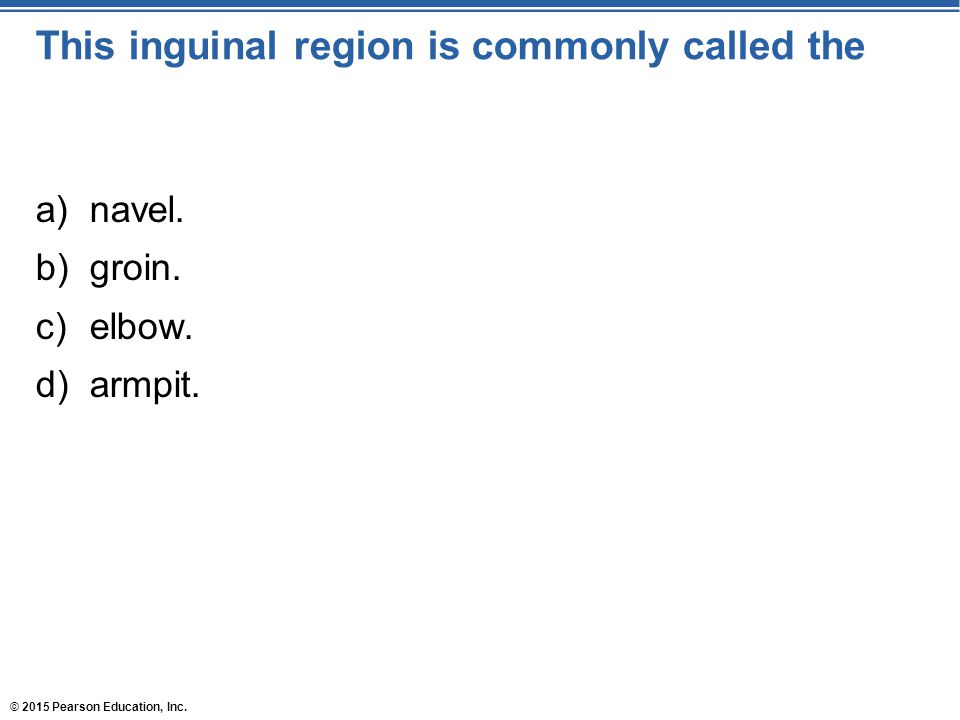 This inguinal region is commonly called the