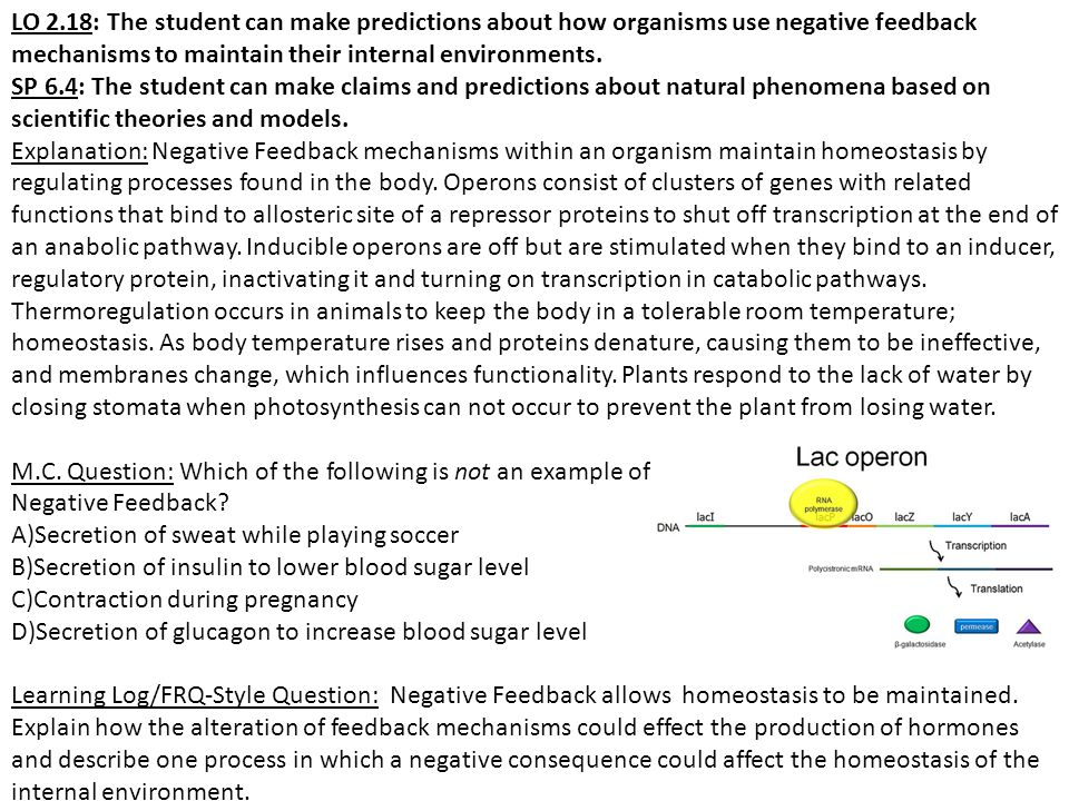 LO 2.18: The student can make predictions about how organisms use negative feedback mechanisms to maintain their internal environments.
