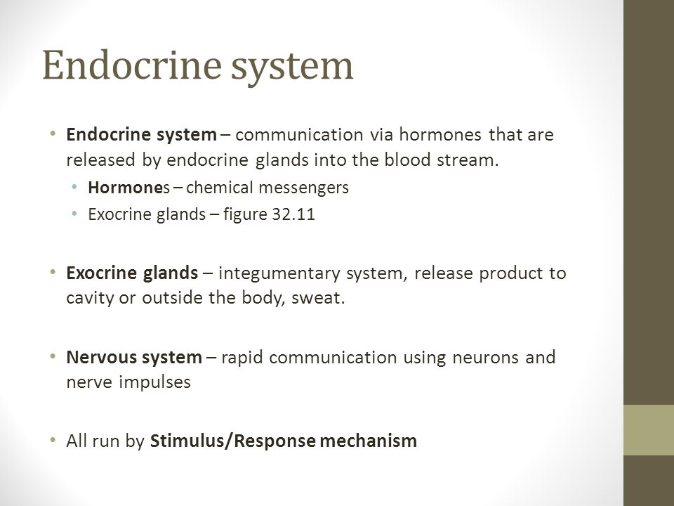 Endocrine system Endocrine system – communication via hormones that are released by endocrine glands into the blood stream.