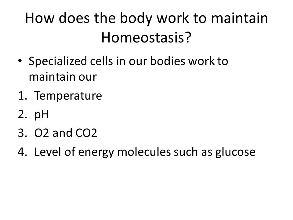 How does the body work to maintain Homeostasis