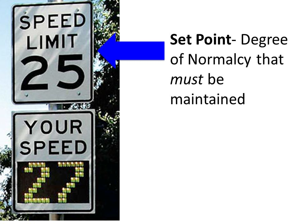 Set Point- Degree of Normalcy that must be maintained