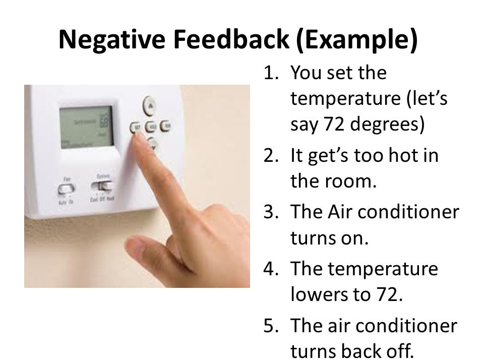 Negative Feedback (Example)