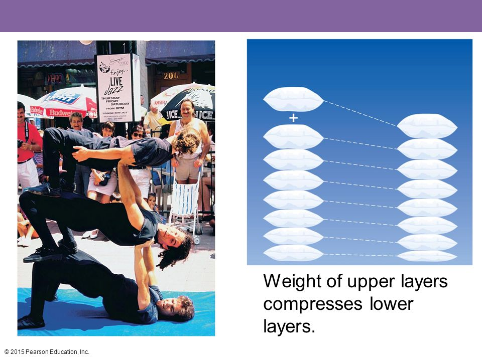 Weight of upper layers compresses lower layers.