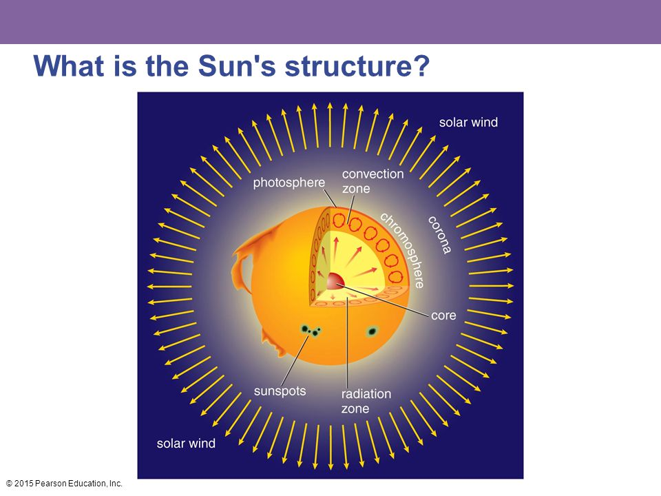 What is the Sun s structure