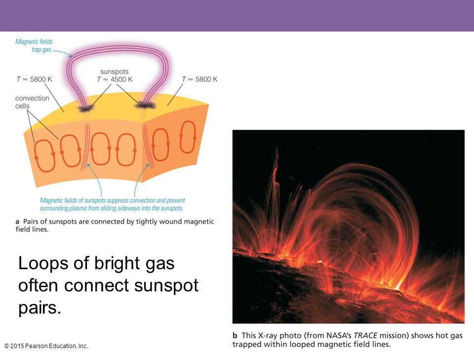 Loops of bright gas often connect sunspot pairs.