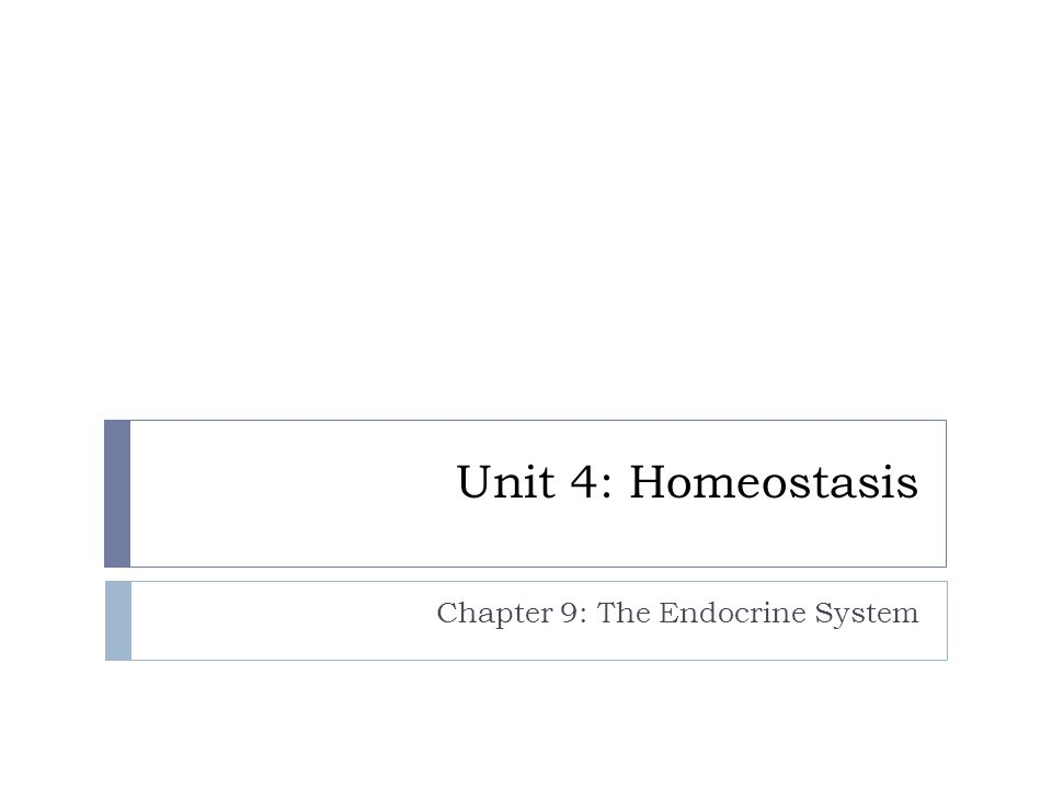 Chapter 9: The Endocrine System