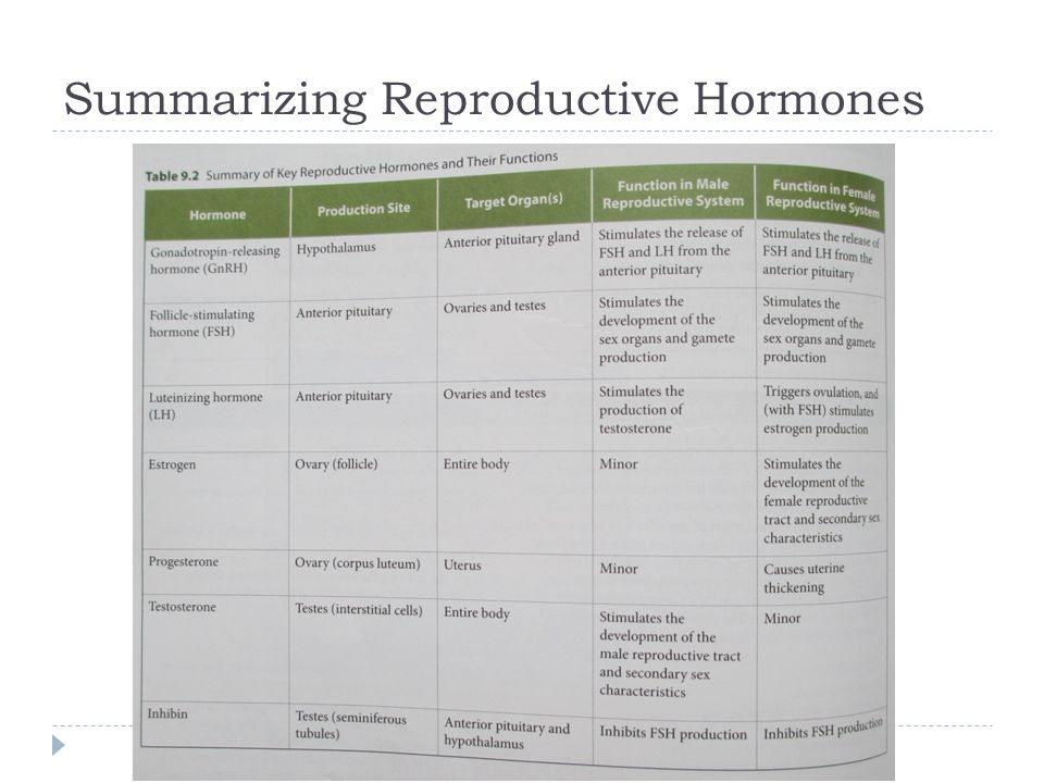 Summarizing Reproductive Hormones