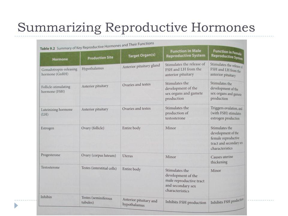 Summarizing Reproductive Hormones