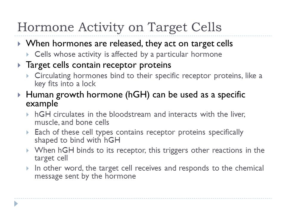 Hormone Activity on Target Cells