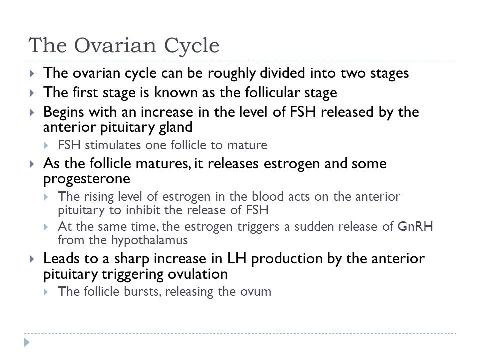 The Ovarian Cycle The ovarian cycle can be roughly divided into two stages. The first stage is known as the follicular stage.