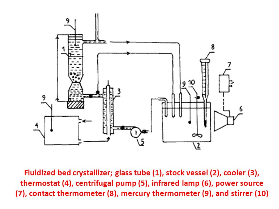 Fluidized bed crystallizer; glass tube (1), stock vessel (2), cooler (3), thermostat (4), centrifugal pump (5), infrared lamp (6), power source (7), contact thermometer (8), mercury thermometer (9), and stirrer (10)