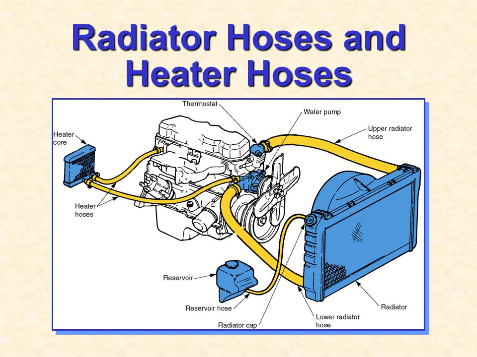 Radiator Hoses and Heater Hoses