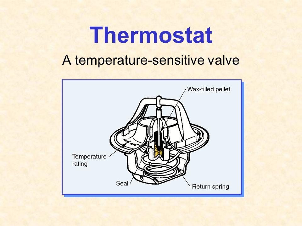 A temperature-sensitive valve