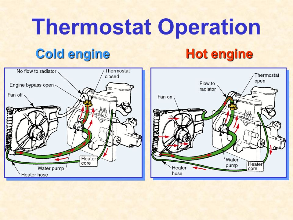 Thermostat Operation Cold engine Hot engine