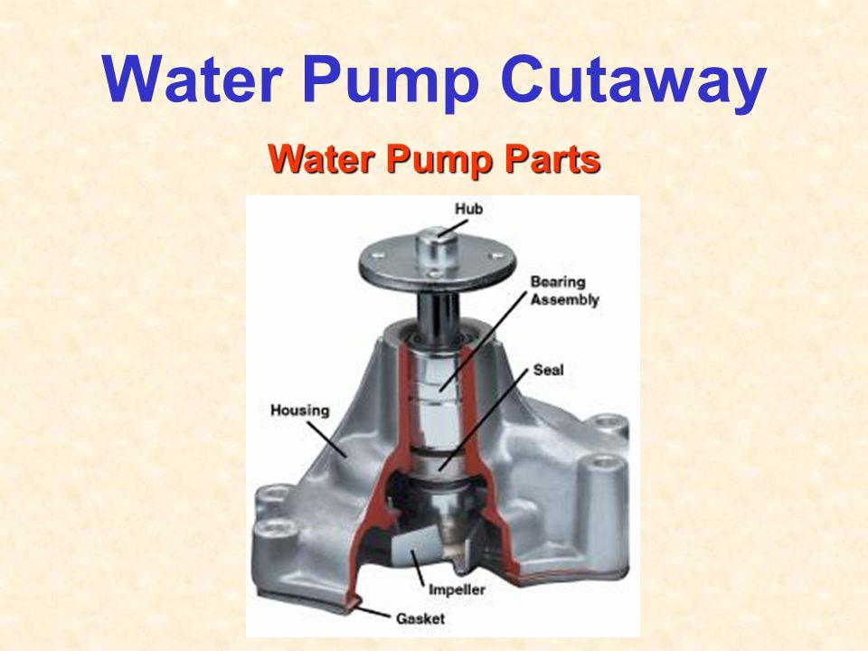 Water Pump Cutaway Water Pump Parts