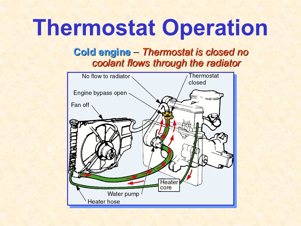 Thermostat Operation Cold engine – Thermostat is closed no coolant flows through the radiator