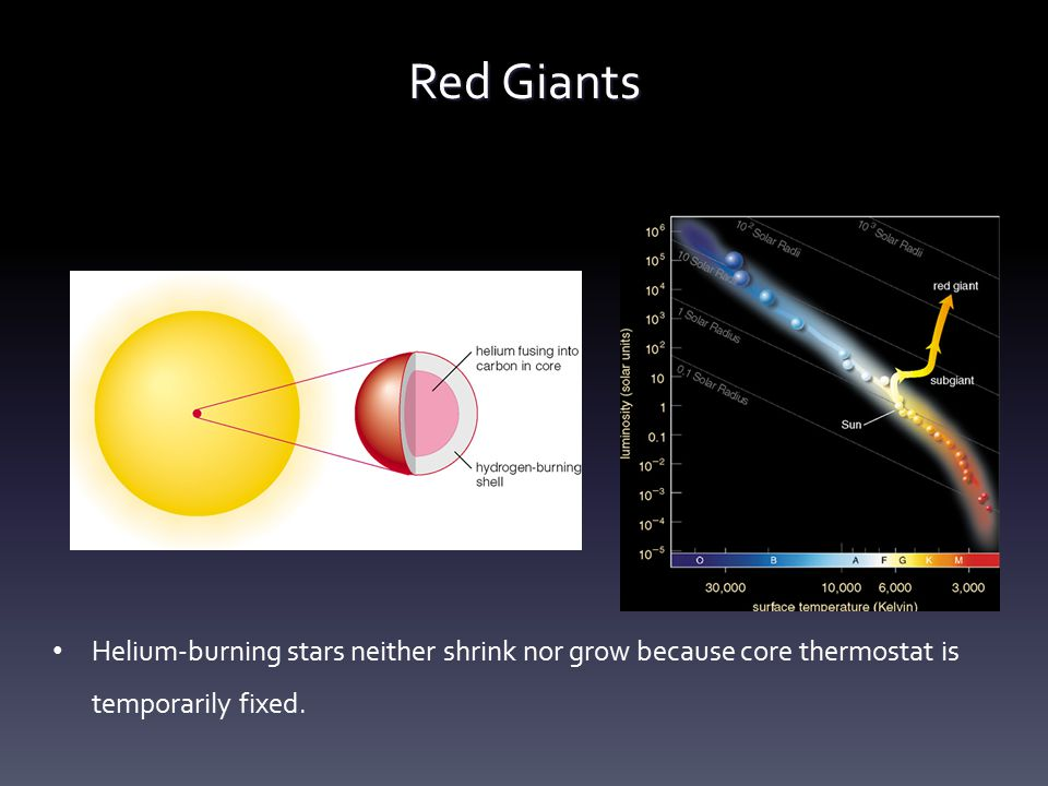 Red Giants Helium-burning stars neither shrink nor grow because core thermostat is temporarily fixed.