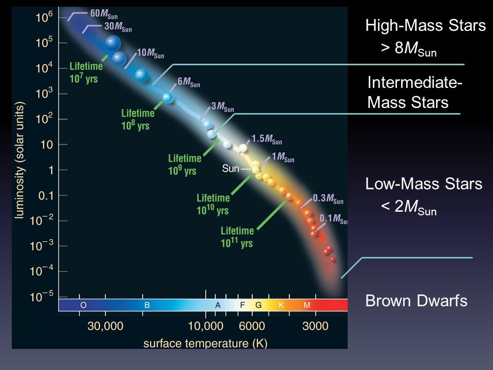 High-Mass Stars > 8MSun Intermediate-Mass Stars Low-Mass Stars < 2MSun Brown Dwarfs
