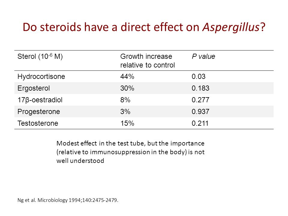 Do steroids have a direct effect on Aspergillus