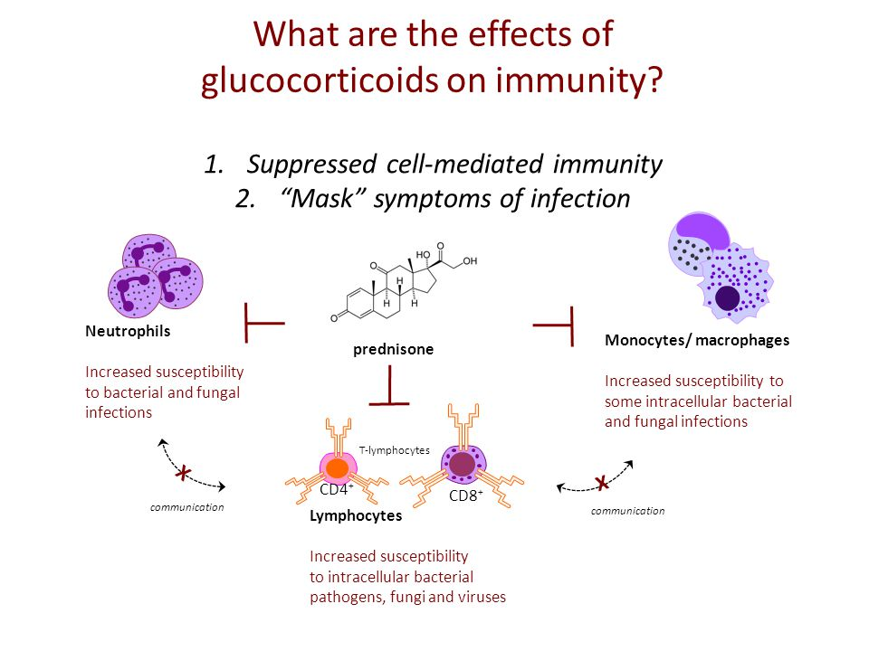 What are the effects of glucocorticoids on immunity