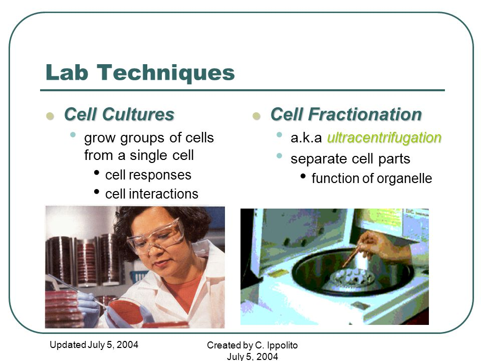 Lab Techniques Cell Cultures Cell Fractionation