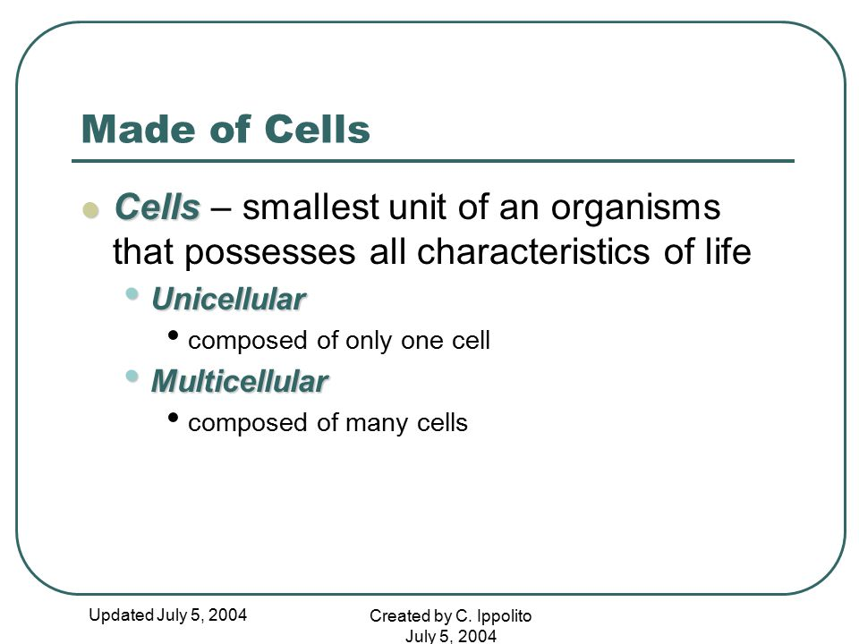 Made of Cells Cells – smallest unit of an organisms that possesses all characteristics of life. Unicellular.