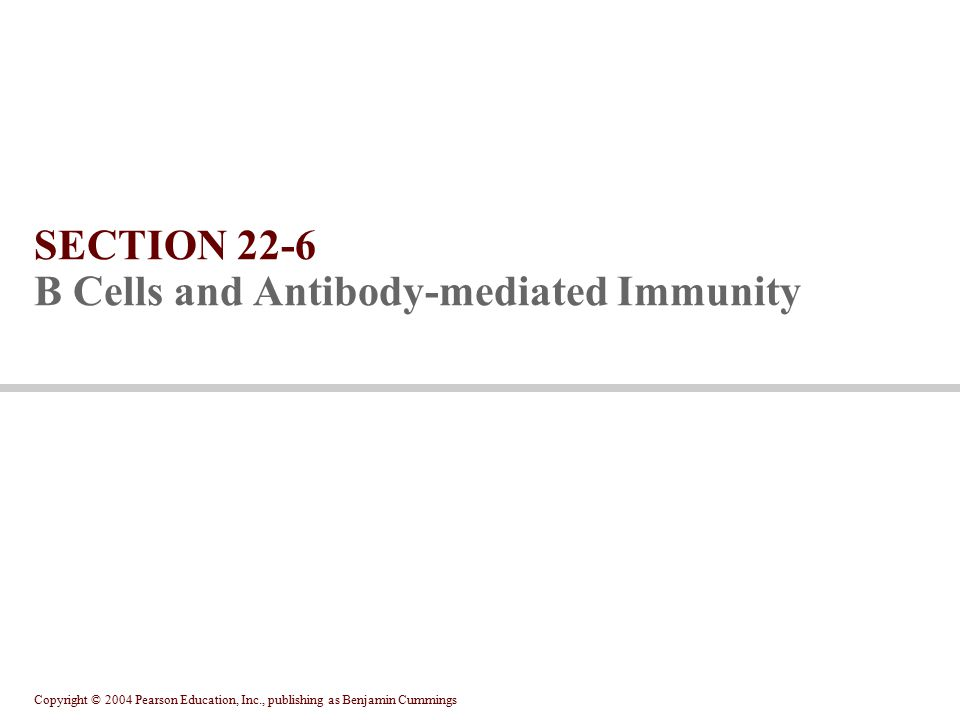 SECTION 22-6 B Cells and Antibody-mediated Immunity