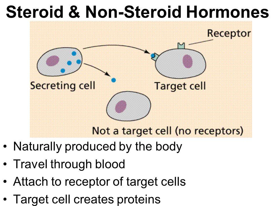 Steroid & Non-Steroid Hormones