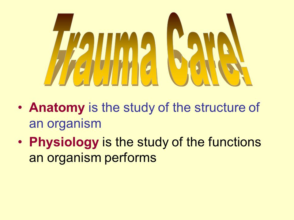 Trauma Care Anatomy Is The Study Of The Structure Of An Organism