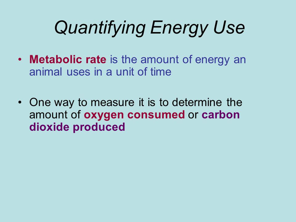 Quantifying Energy Use