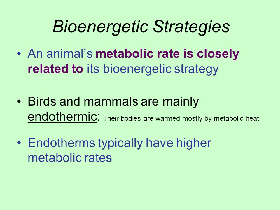 Bioenergetic Strategies