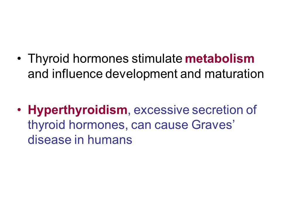Thyroid hormones stimulate metabolism and influence development and maturation