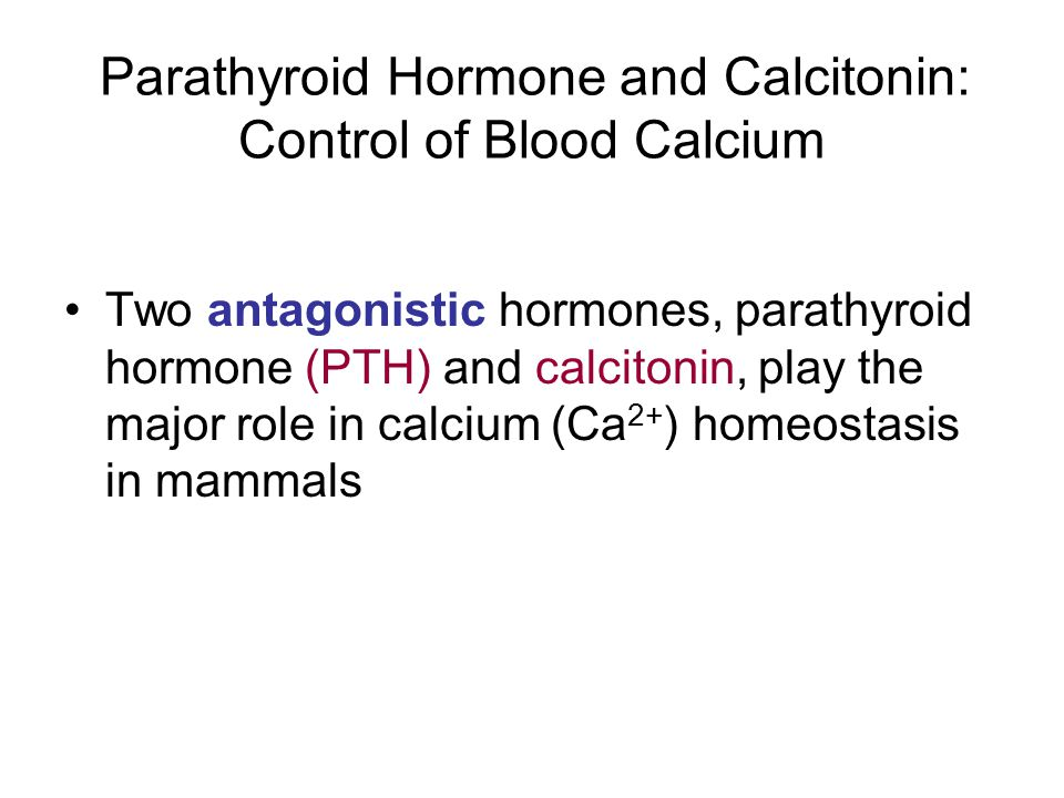 Parathyroid Hormone and Calcitonin: Control of Blood Calcium