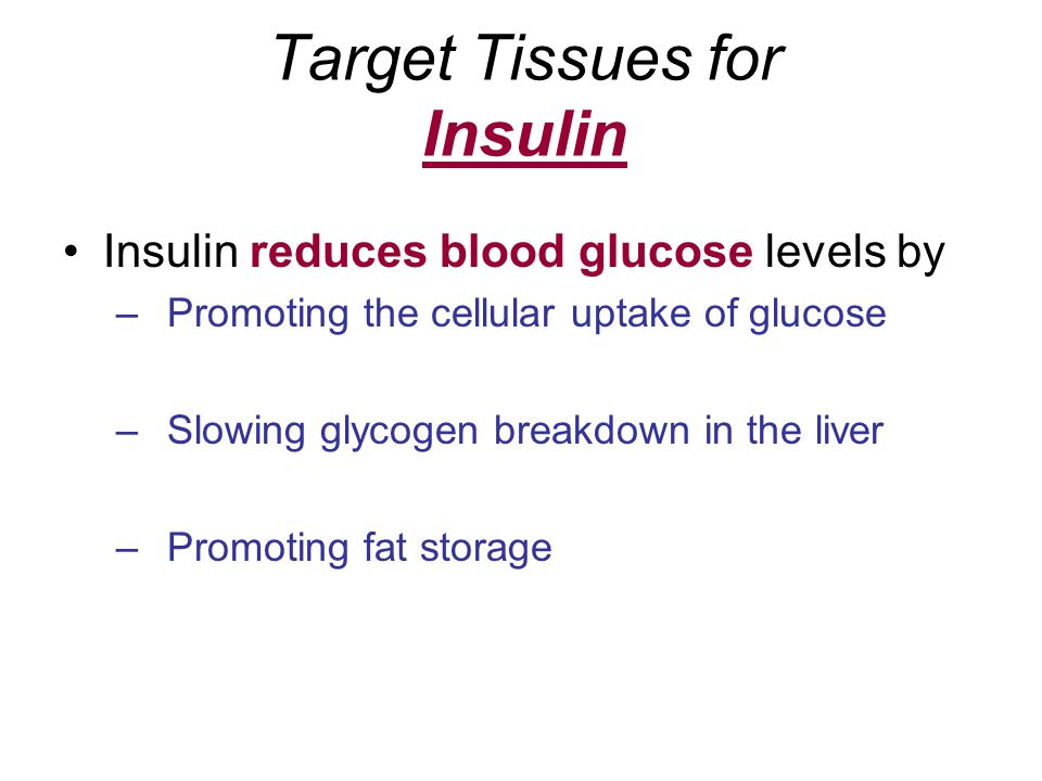 Target Tissues for Insulin