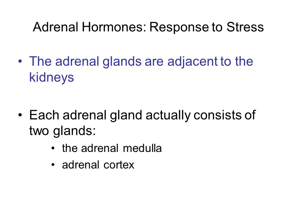 Adrenal Hormones: Response to Stress