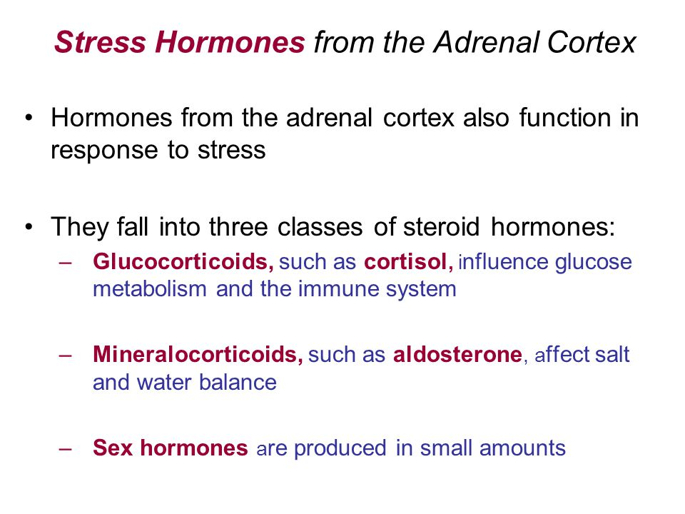 Stress Hormones from the Adrenal Cortex