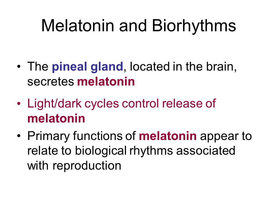 Melatonin and Biorhythms
