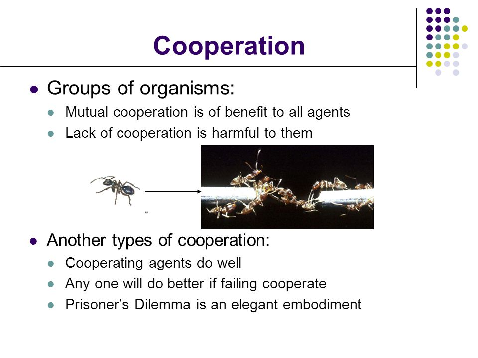 Cooperation Groups of organisms: Another types of cooperation: