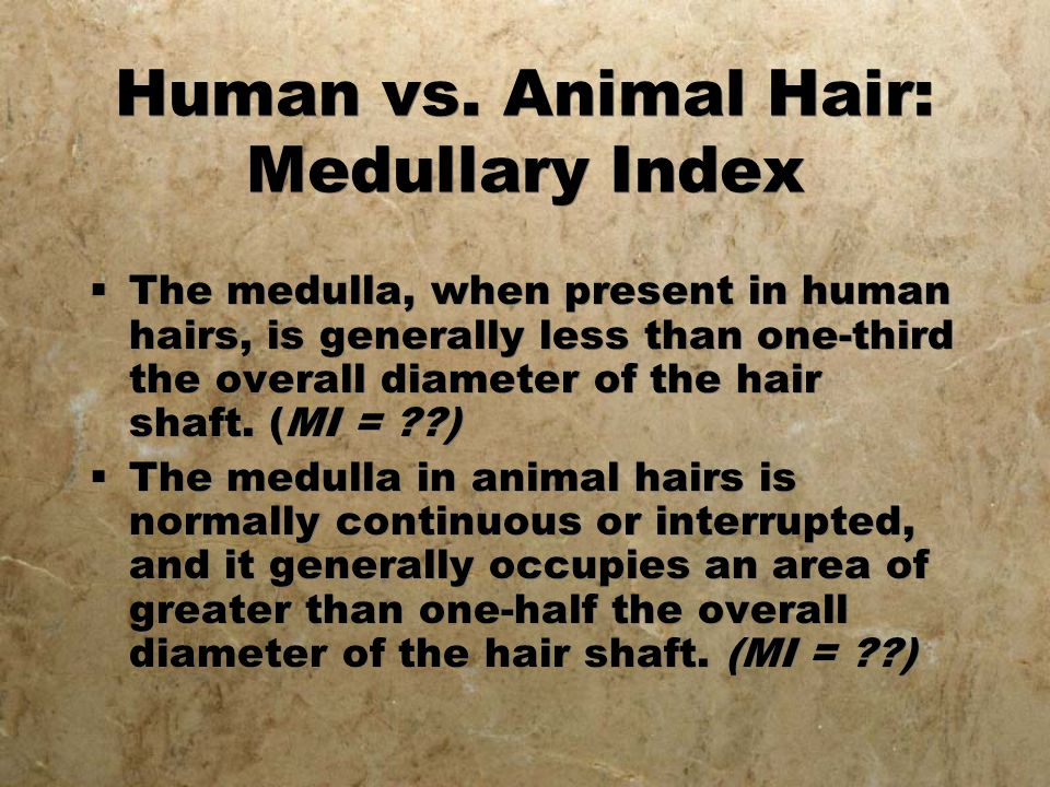 Human vs. Animal Hair: Medullary Index