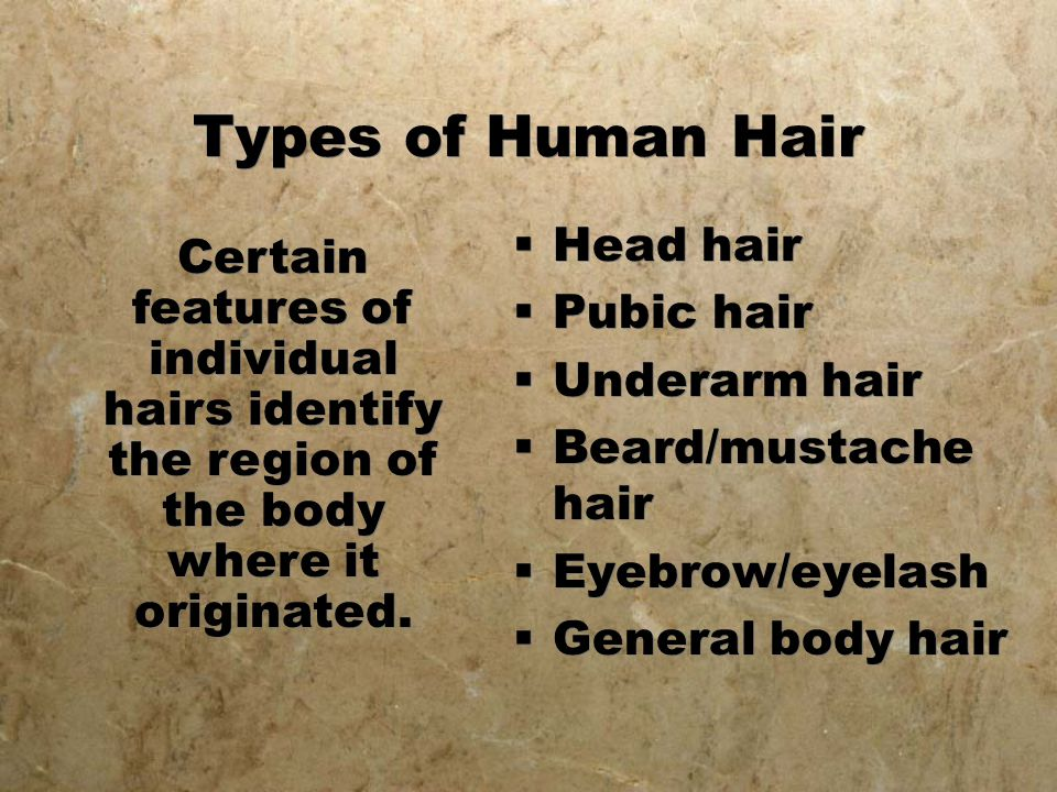 Types of Human Hair Head hair